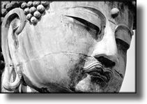 Black and White Picture of Giant Buddah, Kamakura Japan